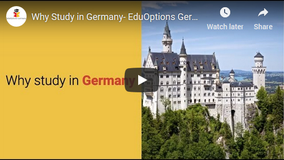 Why Germany Video Image